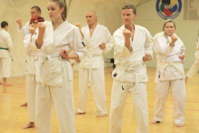 karaten-peruskurssi-tampereella-seigokan
