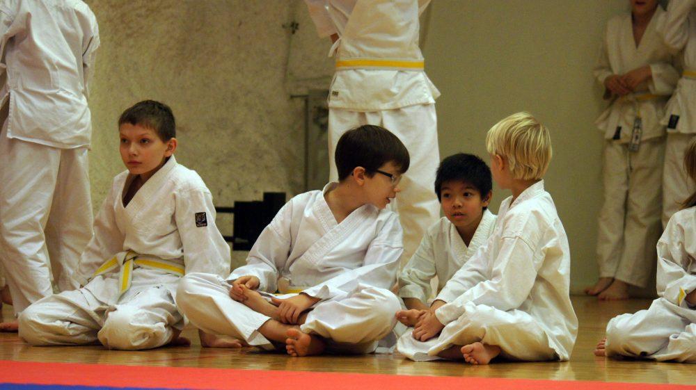 seigokan_karaten_peruskurssi_lapsille