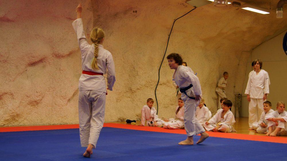 karate-seigokanissa-salikisat-lapsille