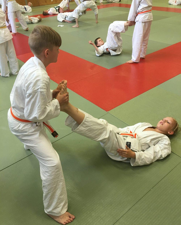 seigokan-kesaleirilla-karate-treenit