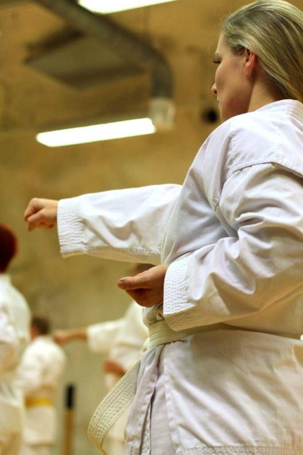 karaten-alkeiskurssi-tampereella-seigokan
